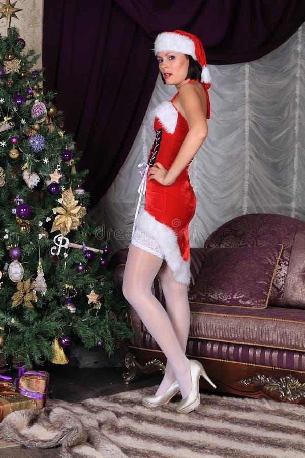 Modelo de forma nas meias que levantam no estúdio foto de stock