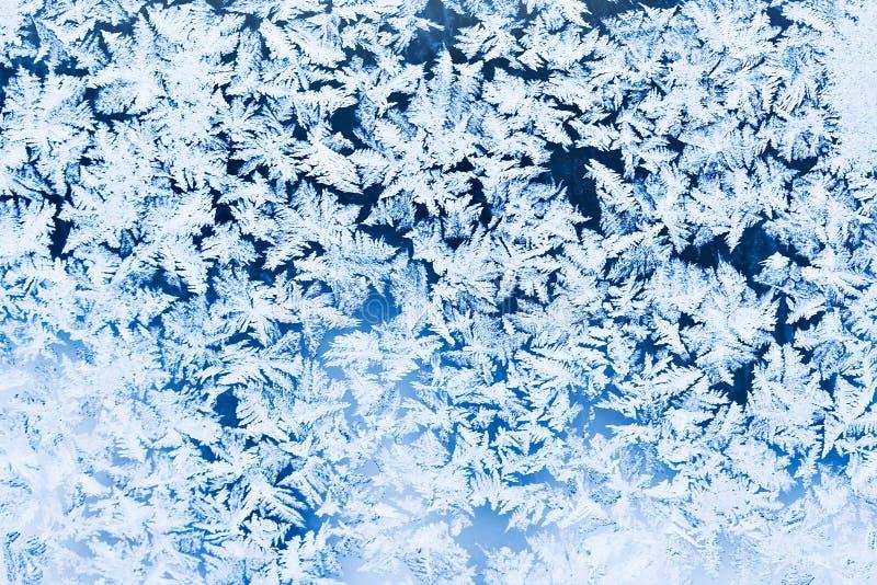 Modelo de Frost fotografía de archivo