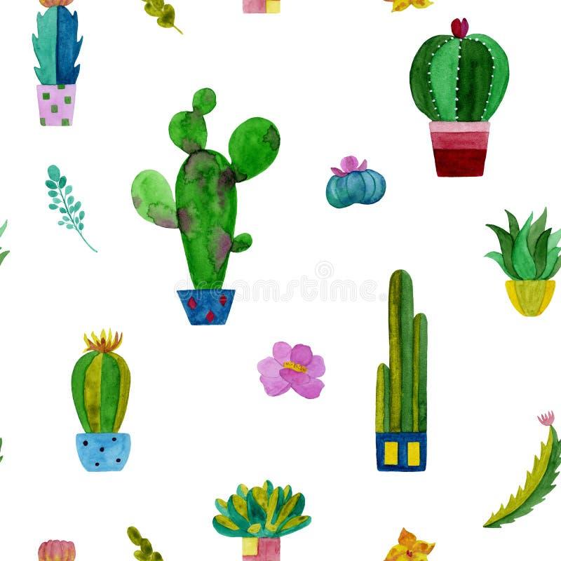 Modelo de la acuarela de cactus y de flores de los succulents ilustración del vector