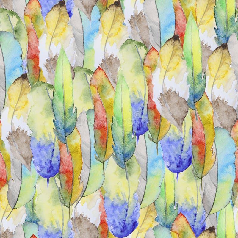 Modelo de la acuarela con las plumas foto de archivo