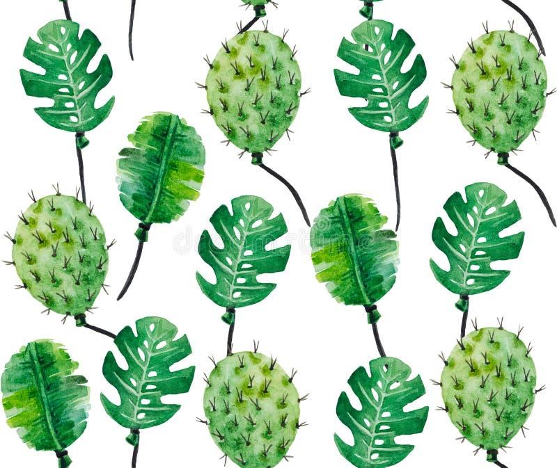 Modelo de la acuarela de las hojas y de los cactus del monstera stock de ilustración
