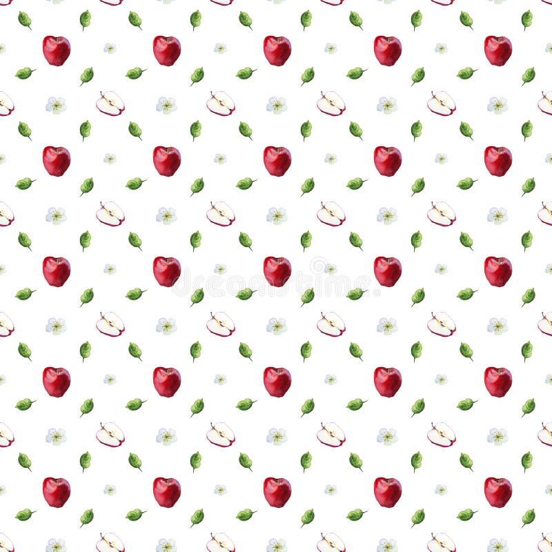 Modelo de la acuarela de manzanas, de hojas y de flores rojos ilustración del vector