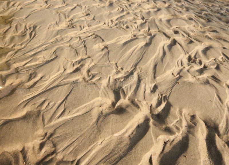 Modelo de la arena y del fango foto de archivo