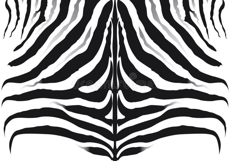 Modelo de la cebra stock de ilustración