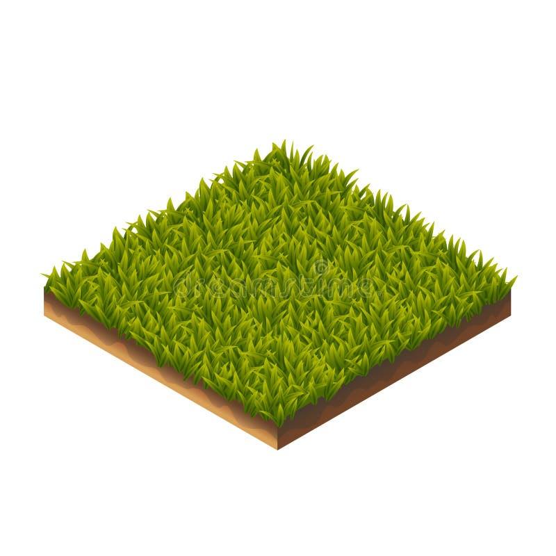 Modelo de la hierba isométrico ilustración del vector