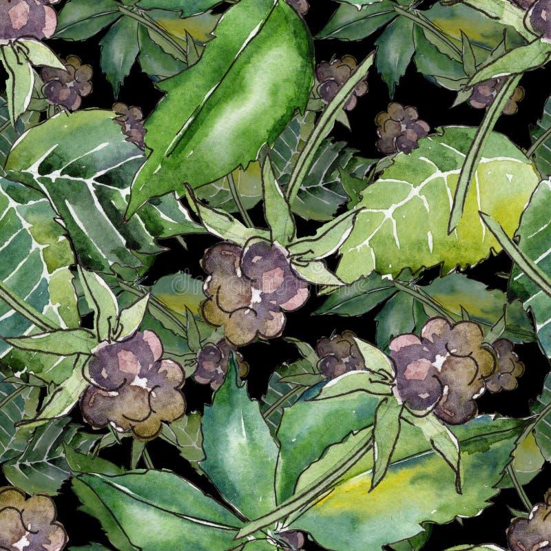 Modelo de la hoja de Blackberry Follaje floral del jardín botánico de la planta de la hoja stock de ilustración