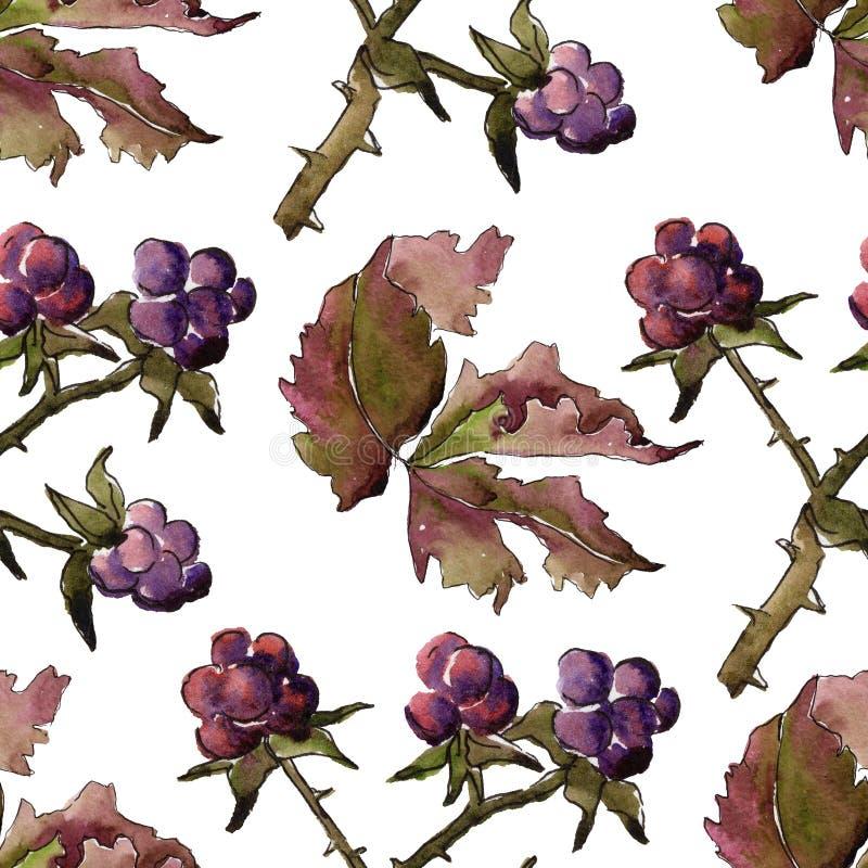 Modelo de la hoja de Blackberry Follaje floral del jardín botánico de la planta de la hoja ilustración del vector