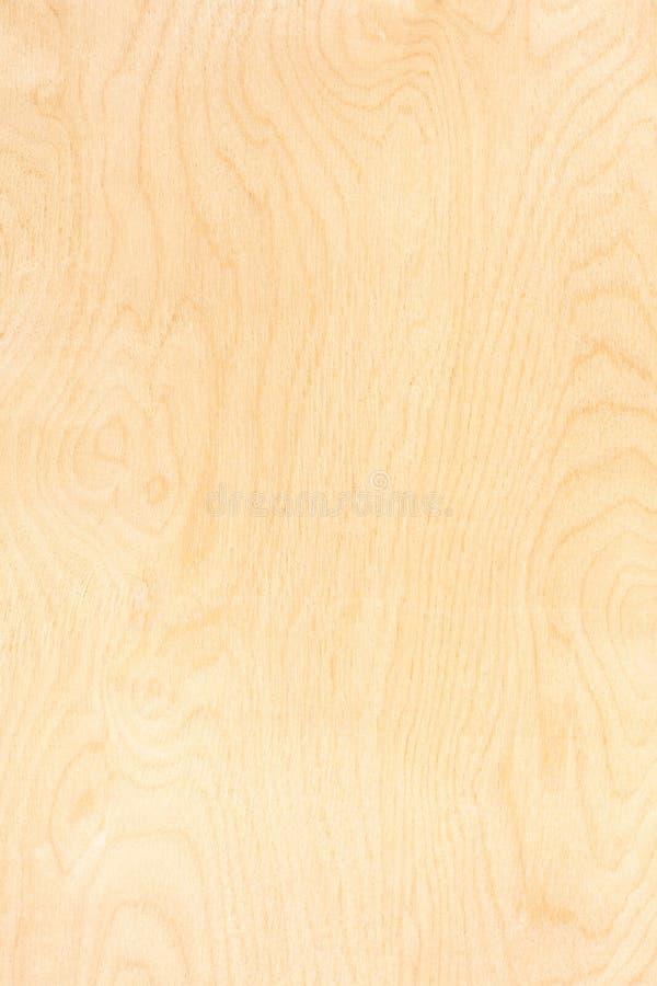 Modelo de la madera contrachapada del abedul imagen de archivo