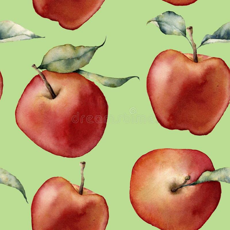 Modelo de la manzana de la acuarela Manzanas rojas pintadas a mano con las hojas en fondo verde Ejemplo botánico de la comida stock de ilustración