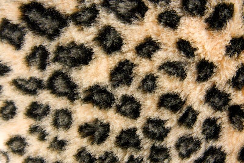 Modelo de la piel de la pantera fotos de archivo libres de regalías