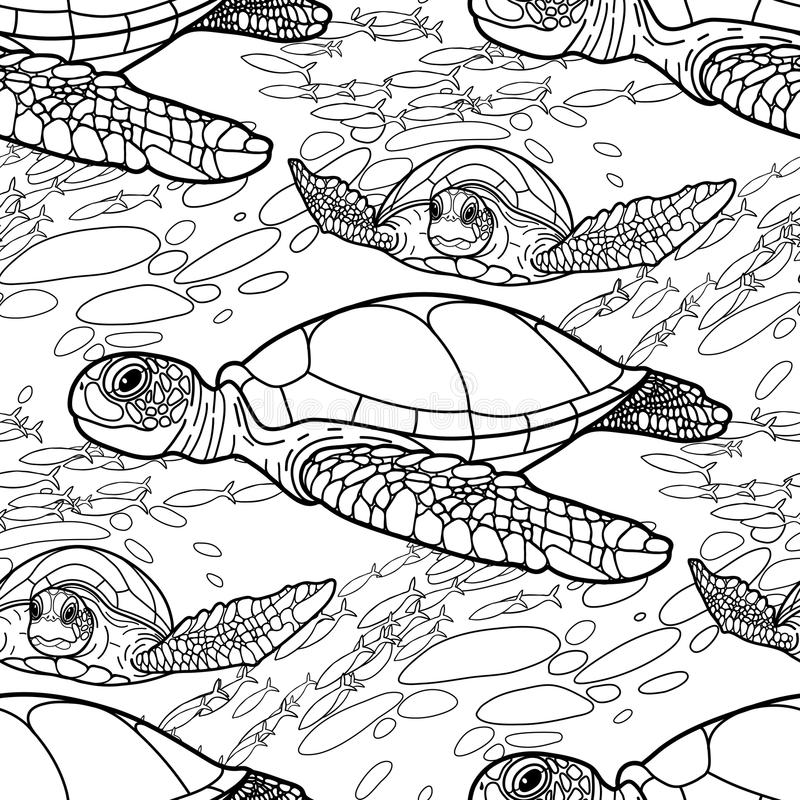 Modelo de la tortuga de mar de Hawksbill ilustración del vector