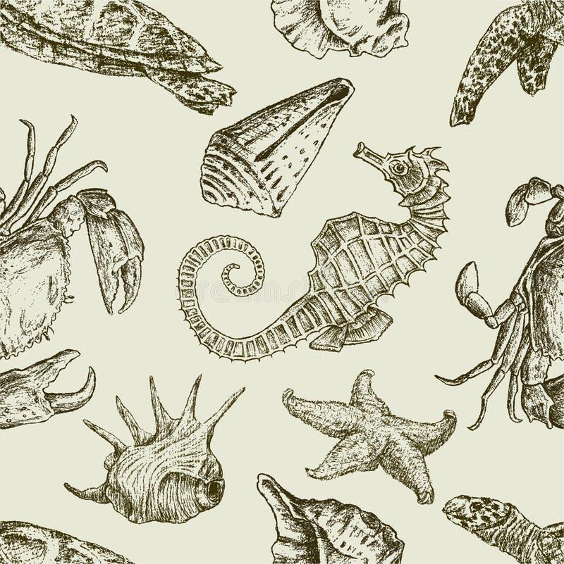 Modelo de las criaturas del mar ilustración del vector