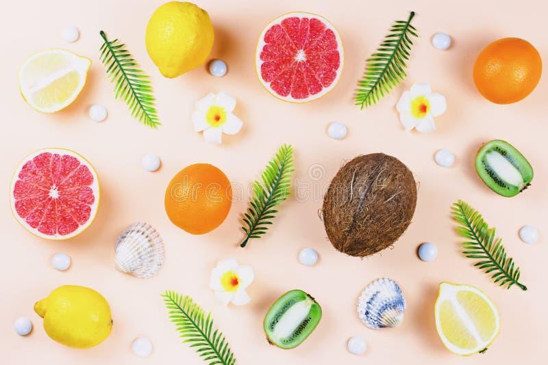 Modelo de las frutas tropicales del verano en el fondo coralino del color imagenes de archivo