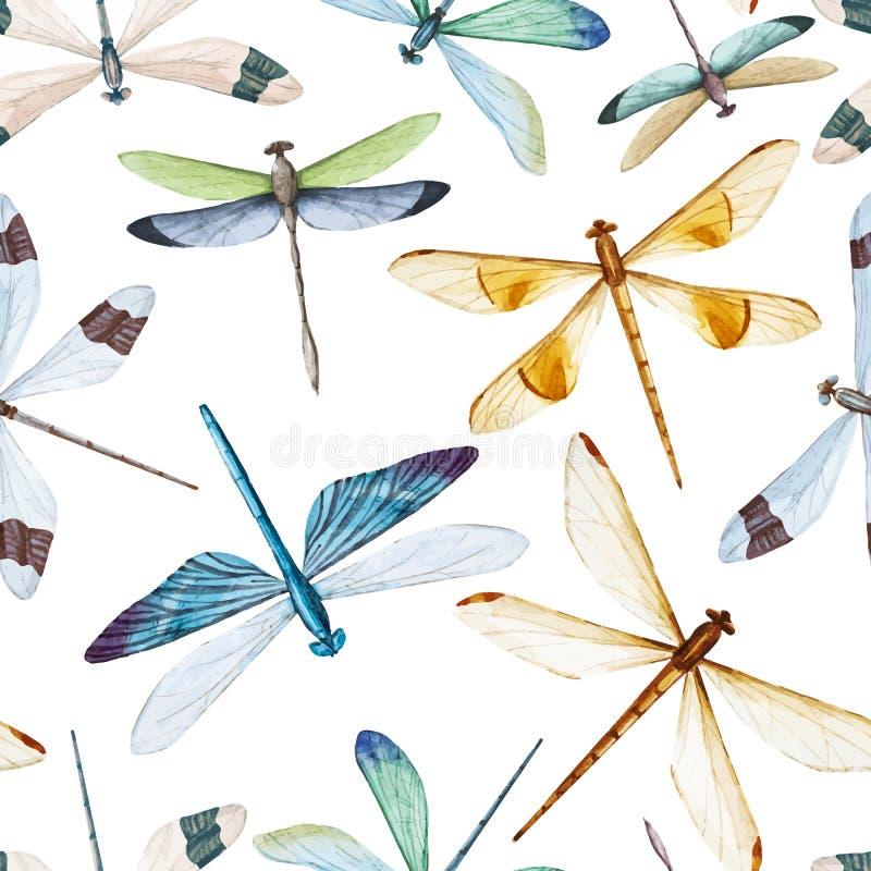 Modelo de las libélulas de la acuarela ilustración del vector