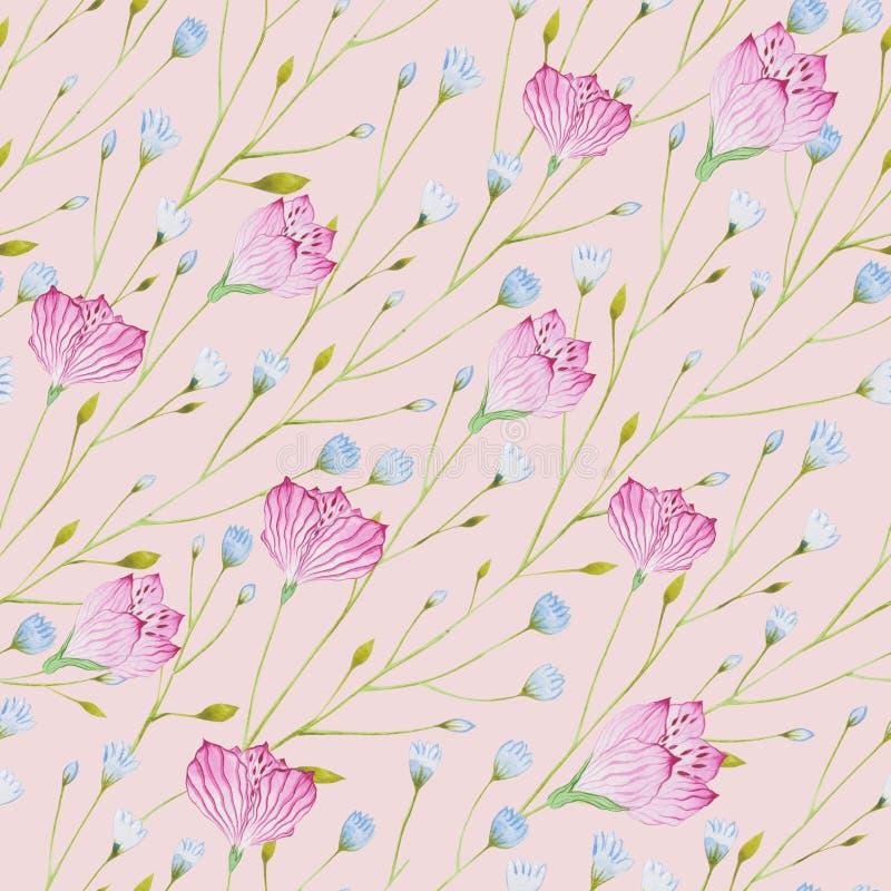 Modelo de las ramitas finas de la acuarela con las flores azules y rosadas en un fondo rosado ilustración del vector