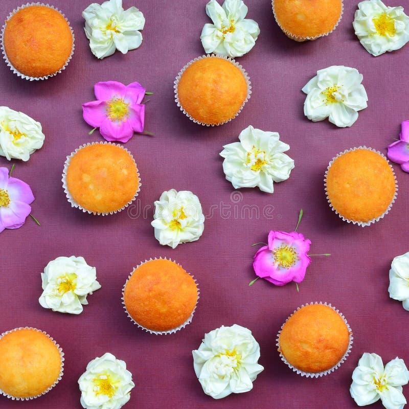 Modelo de las tortas y de las rosas foto de archivo
