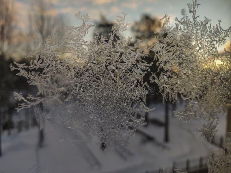Modelo de los cristales de hielo en la opinión del primer del vidrio de la ventana imágenes de archivo libres de regalías