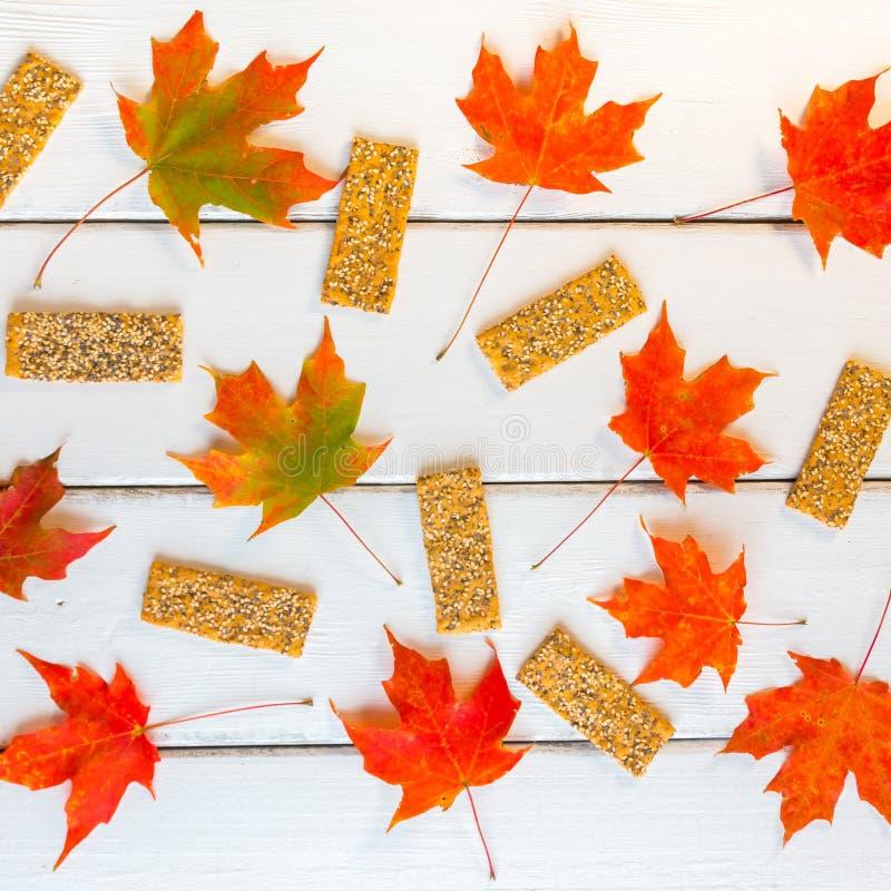 Modelo de los flatbreads de las semillas y de las hojas de arce del otoño en w blanco foto de archivo