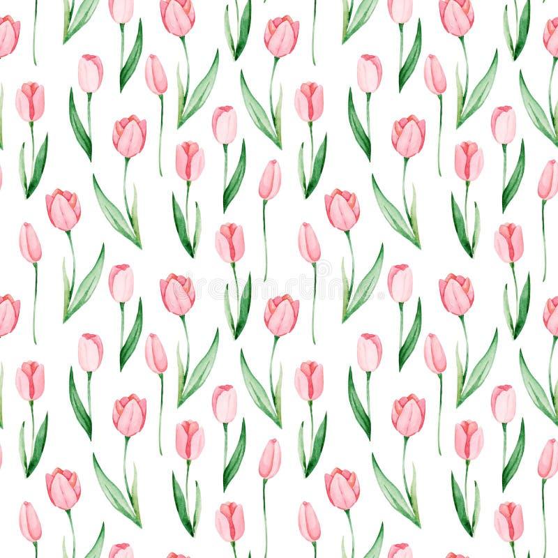 Modelo de los tulipanes de la acuarela Día internacional del ` s de las mujeres Para el diseño, la tarjeta, la impresión o el fon stock de ilustración