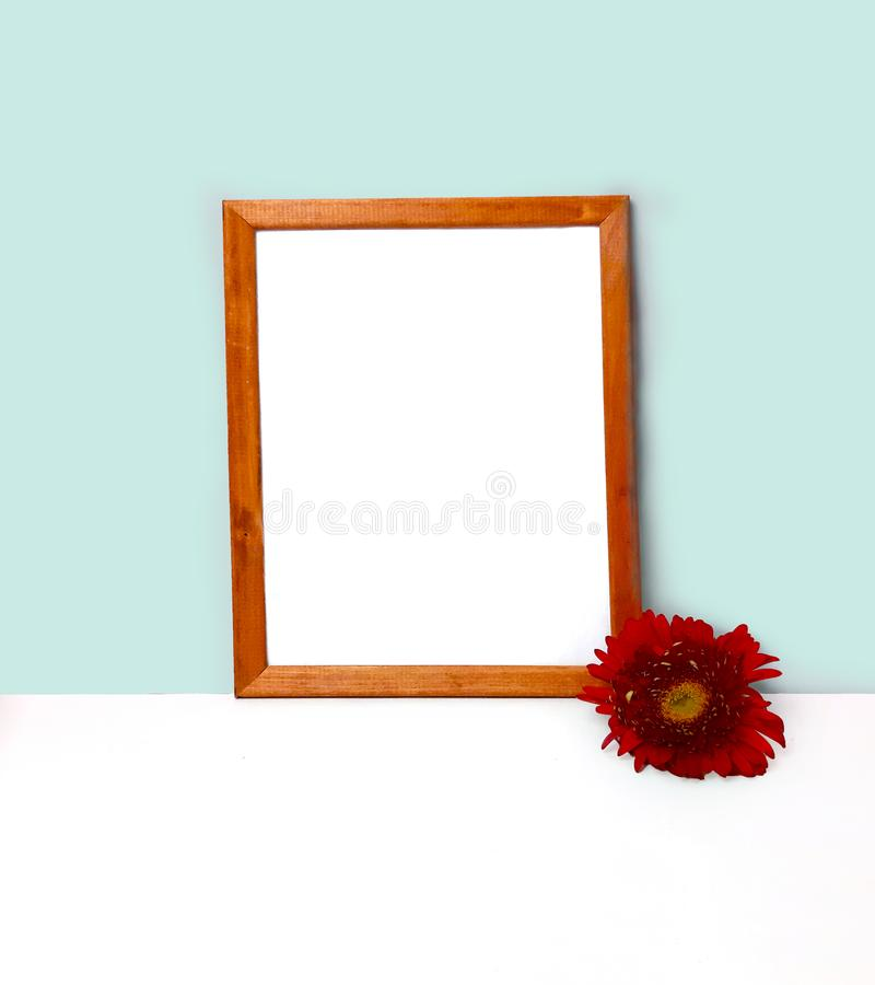 Modelo de madeira vazio do quadro para a apresentação do projeto, flor vermelha na parede da cor da hortelã e tabela foto de stock