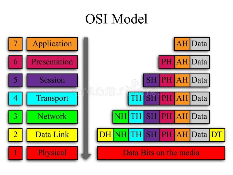 Modelo de red de la OSI ilustración del vector