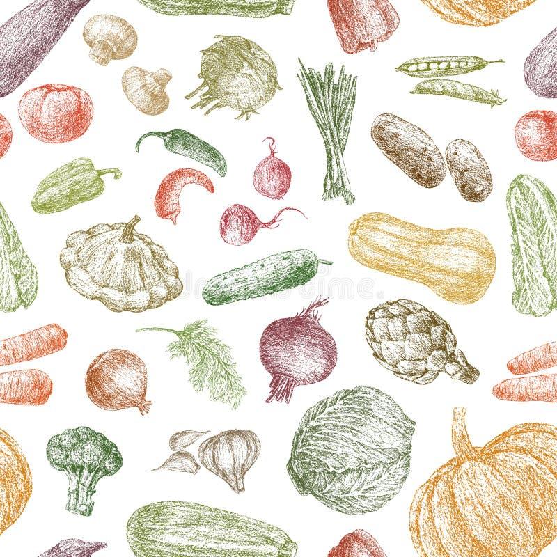 Modelo de verduras ilustración del vector