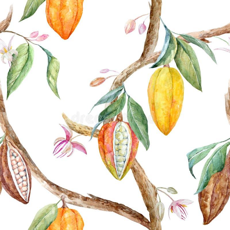 Modelo del cacao de la acuarela stock de ilustración