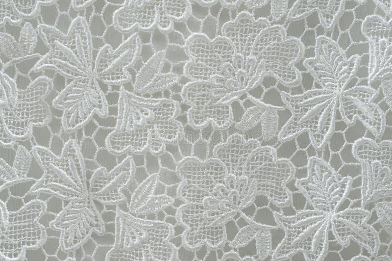 Modelo del cordón de la flor imágenes de archivo libres de regalías
