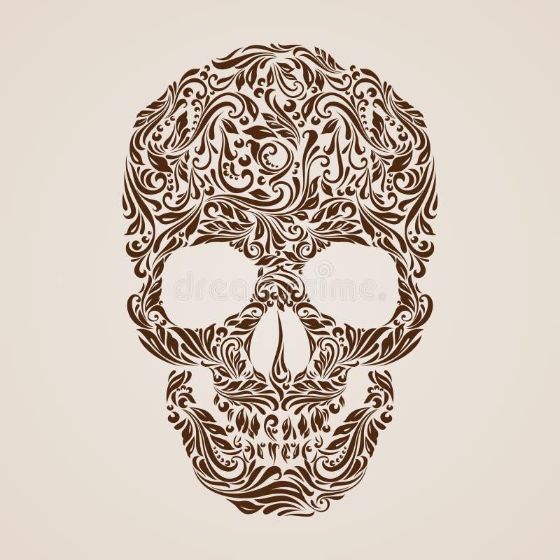 Modelo del cráneo stock de ilustración