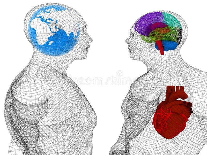Modelo del cuerpo humano del alambre con el corazón y cerebro en radiografía 3d rinden stock de ilustración