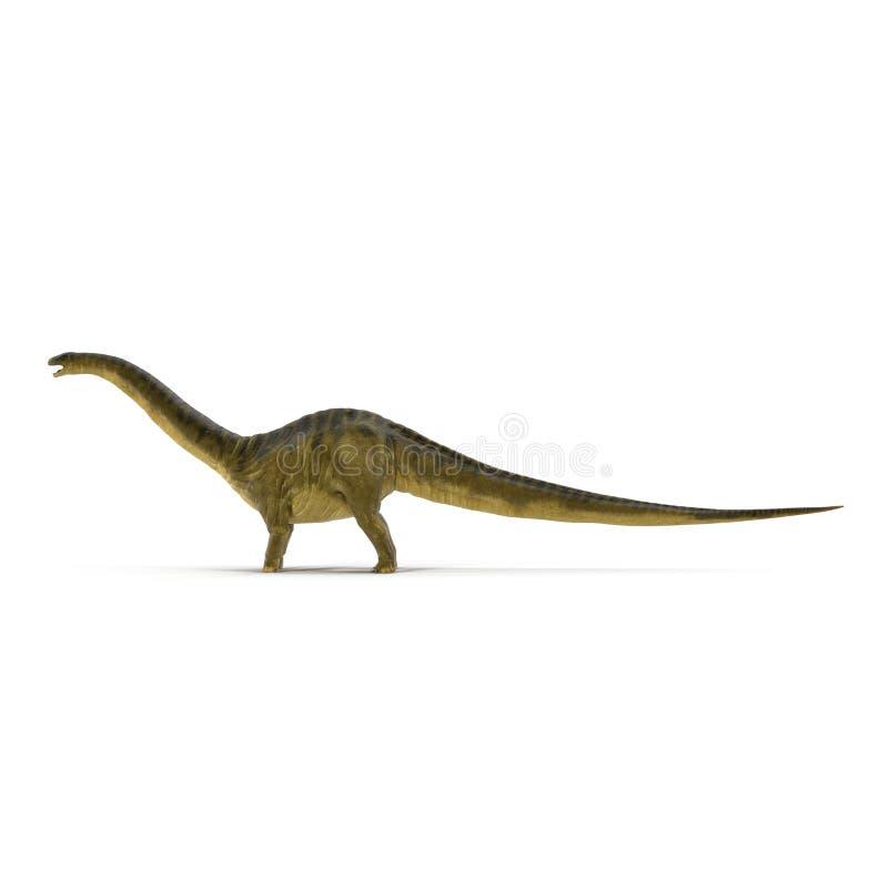 Modelo del dinosaurio del Apatosaurus en blanco Vista lateral ilustración 3D stock de ilustración