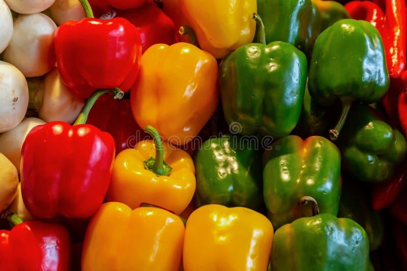Modelo del diseño culinario verde amarillo rojo de la base colorida vegetal jugosa brillante del fondo de las pimientas dulces fotos de archivo