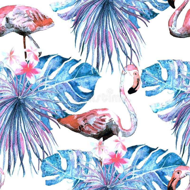 Modelo del flamenco Fondo de la acuarela del verano libre illustration