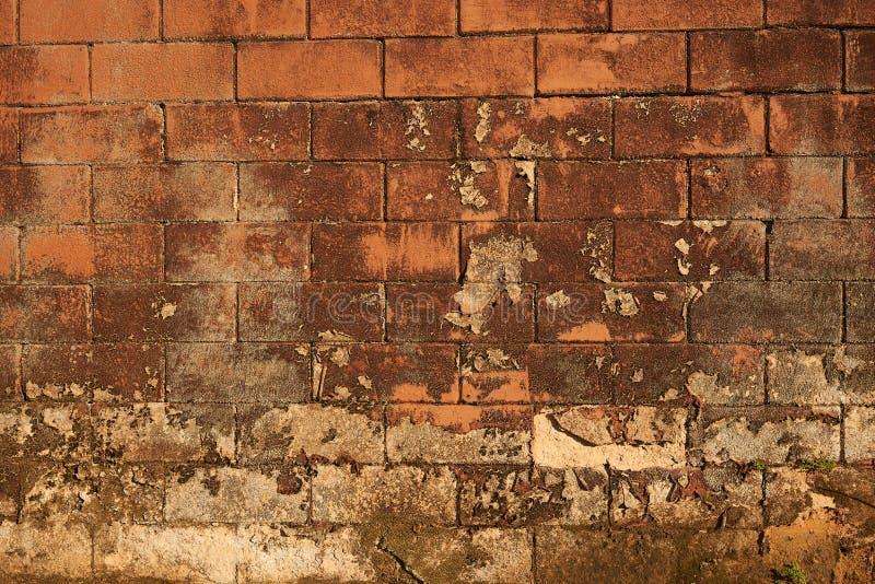 Modelo del fondo del viejo brickwall marrón fotografía de archivo libre de regalías