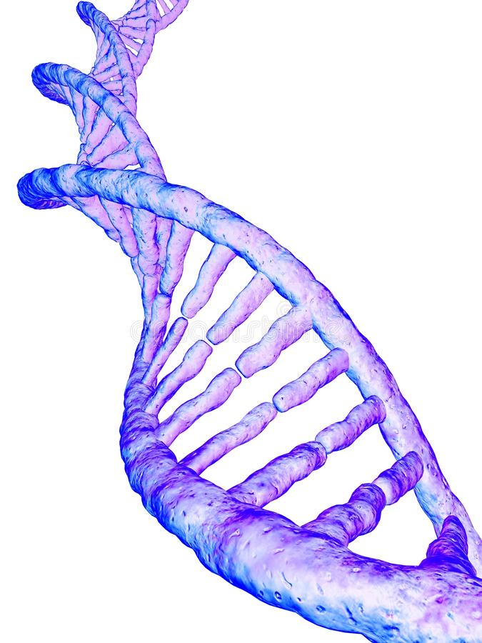 Modelo del gene libre illustration