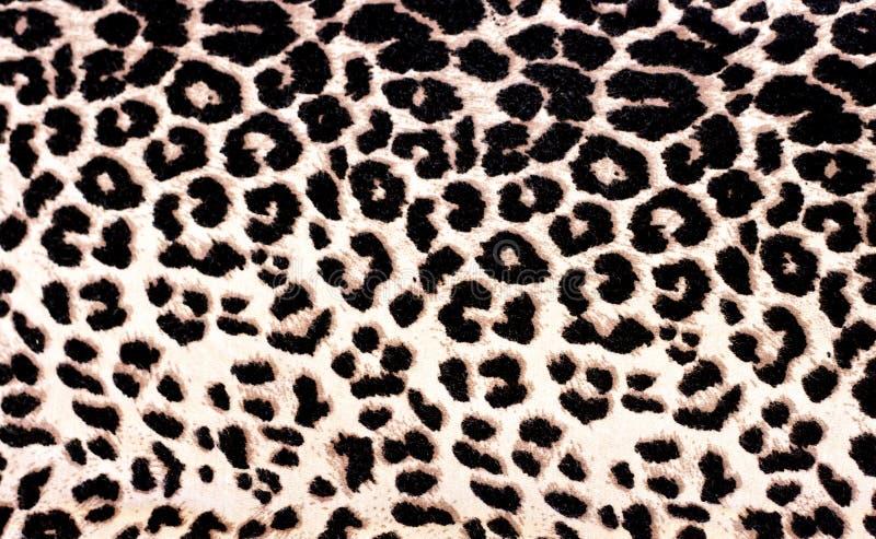 Modelo del leopardo foto de archivo