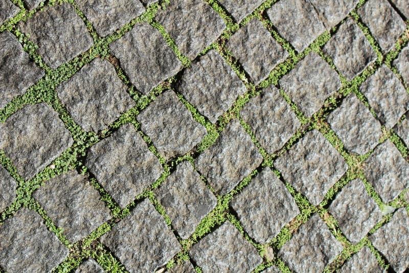 Modelo del piso de la hierba y de la piedra fotos de archivo