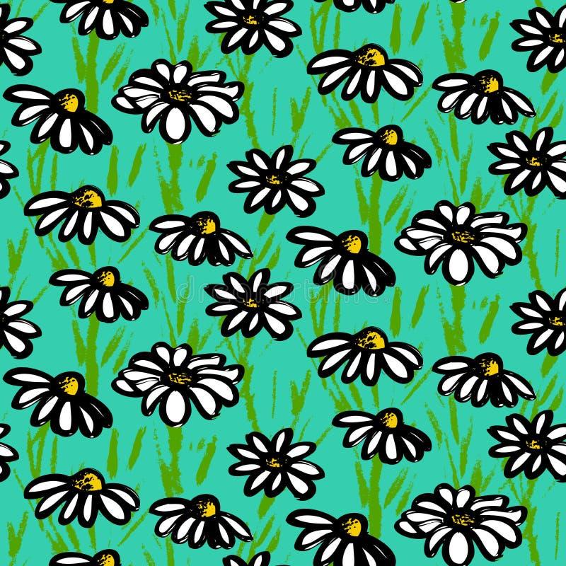 Modelo del vector con las flores dibujadas mano de la margarita ilustración del vector