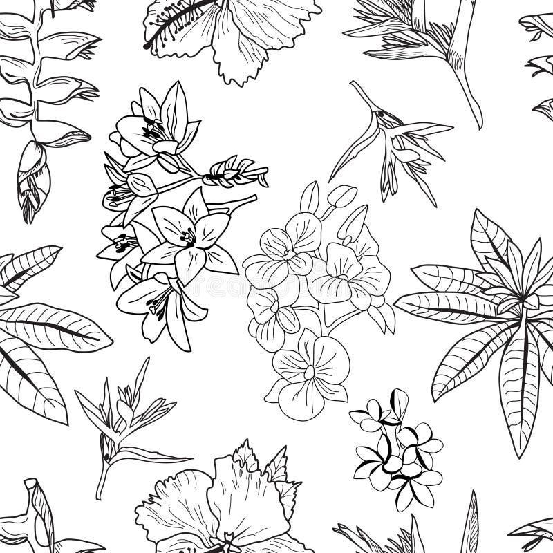 Modelo del vector de las flores tropicales exóticas exhaustas de la mano, hojas, plantas de la selva stock de ilustración
