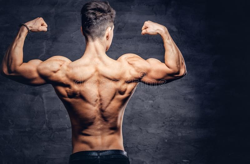Modelo descamisado fuerte del hombre joven con el cuerpo agradable que muestra sus músculos traseros en un estudio imagen de archivo libre de regalías