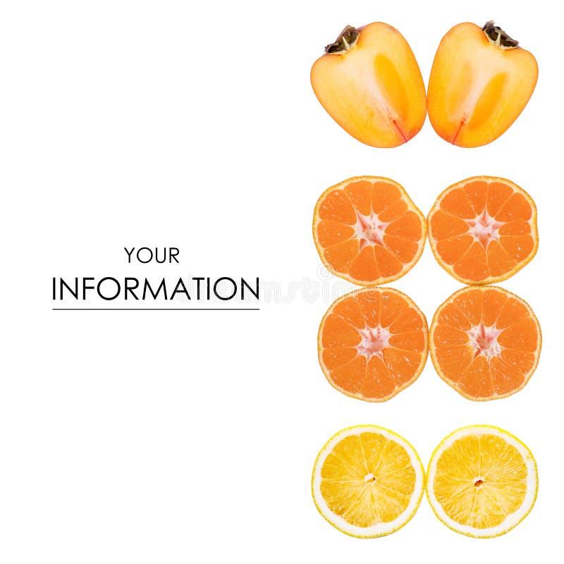 Modelo determinado del limón anaranjado del caqui imágenes de archivo libres de regalías