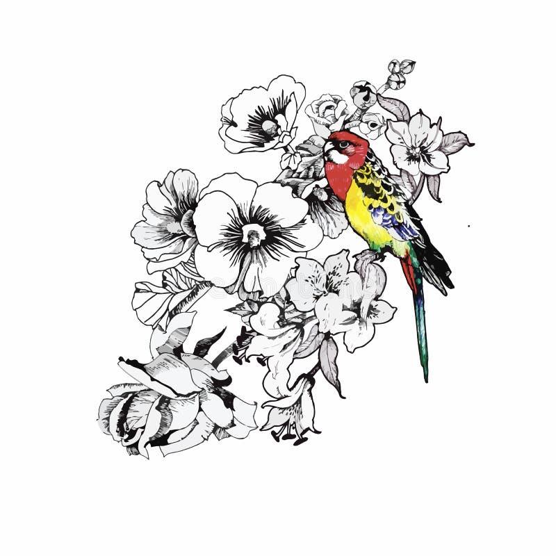 Modelo dibujado mano de la acuarela con las flores tropicales del verano de y los pájaros exóticos ilustración del vector