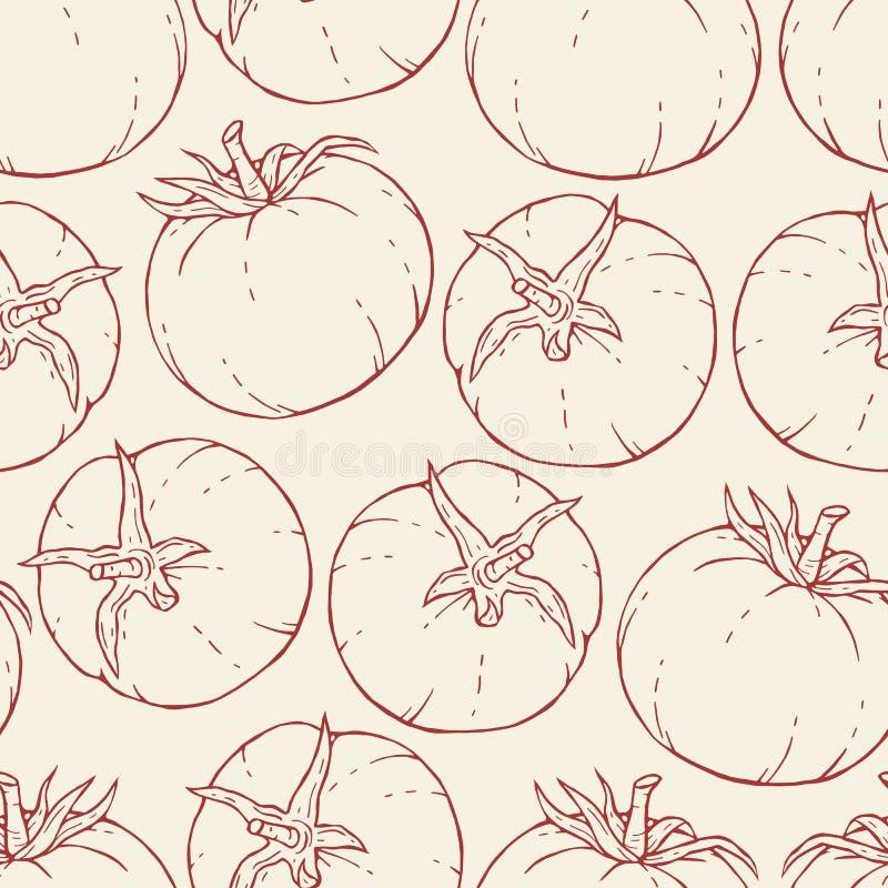 Modelo dibujado mano del tomate libre illustration