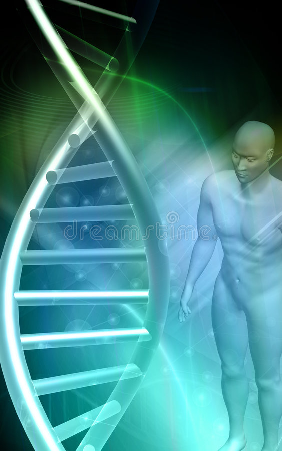 Modelo do ADN e corpo humano no fundo verde ilustração do vetor