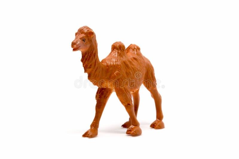 Modelo do camelo isolado no fundo branco, pl?stico animal dos brinquedos foto de stock