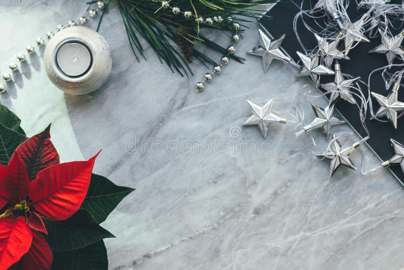 Modelo do close up do Natal com poinsétia, com lugar da cópia Fundo acolhedor foto de stock