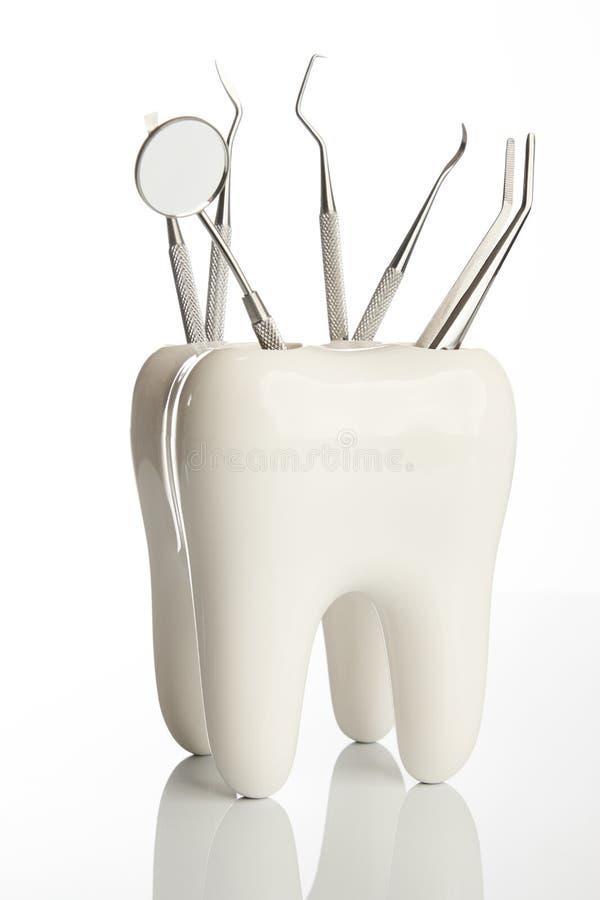 Modelo do dente com as ferramentas médicas do equipamento da odontologia do metal foto de stock