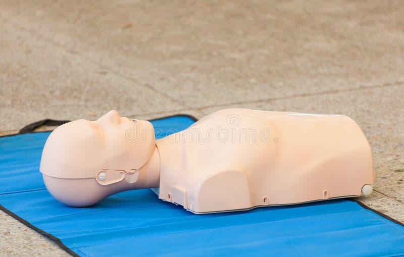 Modelo do manequim usado para o treinamento do CPR fotos de stock royalty free