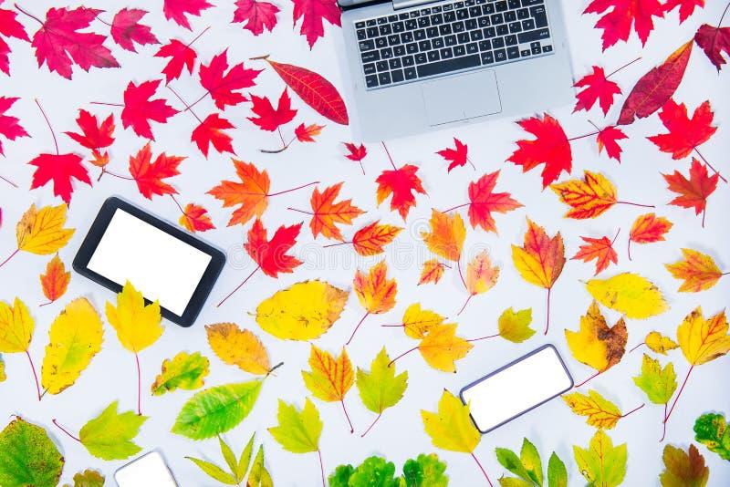 Modelo do outono para vendas sazonais O teclado, a tabuleta e o smartphone do portátil com a tela vazia para o espaço da cópia na fotos de stock royalty free