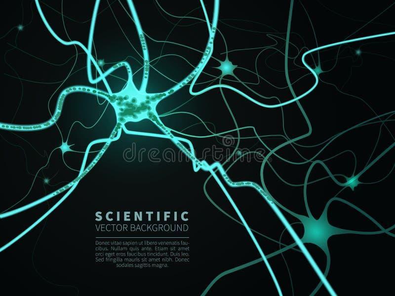 Modelo do sistema neural ilustração stock